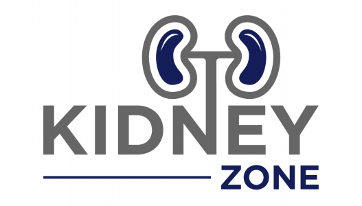 The Kidney Zone